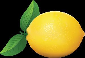 lemon_outline