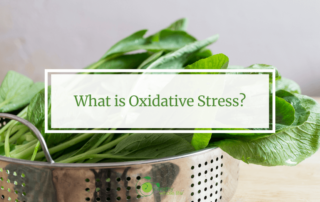 What is Oxidative Stress? green vegetable